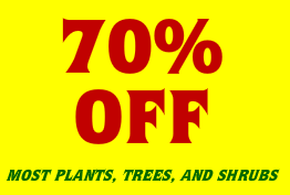 Houston Garden Center Sale 70 Off On Now Qpon Junkie