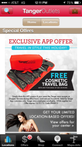 Free Cosmetic Travel Bag